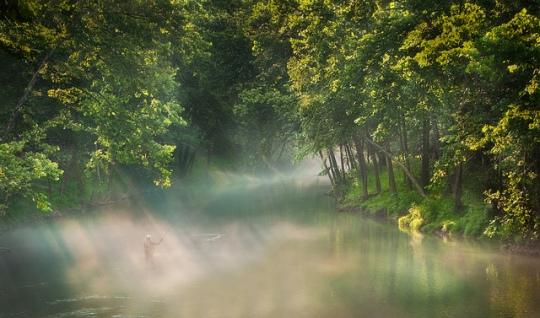 Morning Sernity by Brenda Walker